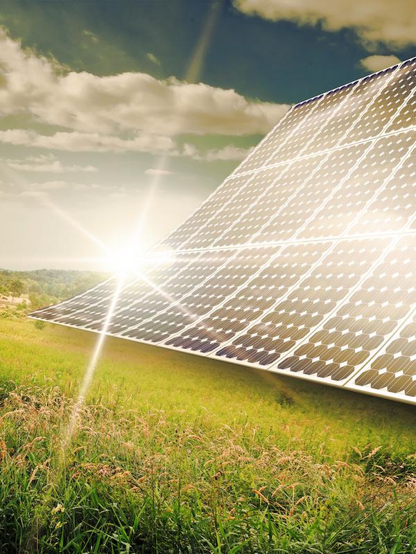 La planta fotovoltaica Don Rodrigo de Alcalá será la mayor de España
