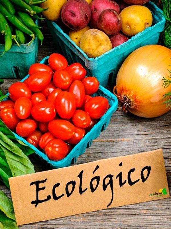 Todas las preguntas ecológicas, responde: www.ecocultura.org