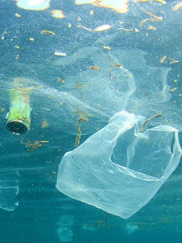 El Parque de Cabo de Gata (Almería) tendrá un plan contra las basuras marinas el próximo verano