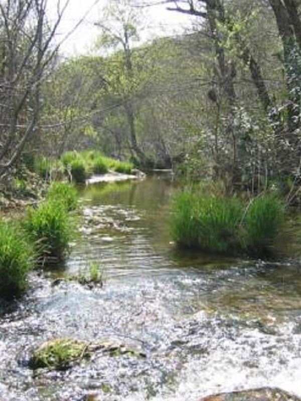 Voluntarios ambientales abordarán en Málaga la situación de los ecosistemas fluviales de las cuencas internas andaluzas