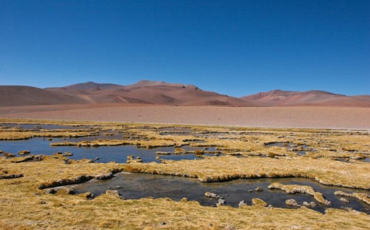 Lluvia en desierto de Atacama acaba con vida microbiana