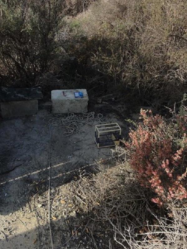 La Guardia Civil investiga a una persona por utilizar medios de caza ilegal en Tabernas