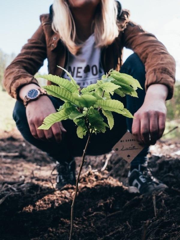 La startup one oak reforestará 10.000 árboles autóctonos en Galicia con el nombre de sus clientes
