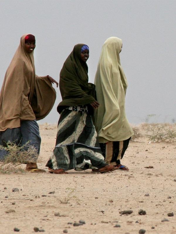 Las migraciones climáticas