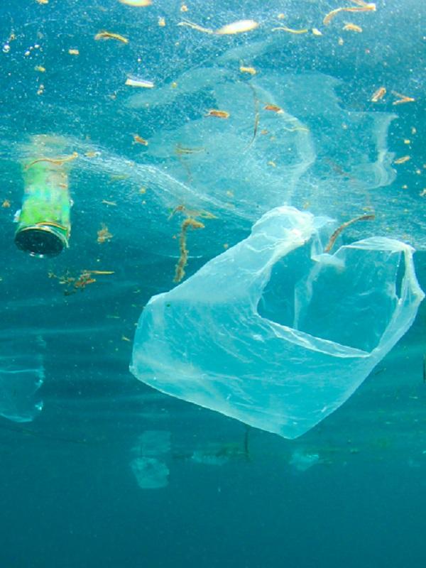 La pesadilla de los plásticos de un solo uso