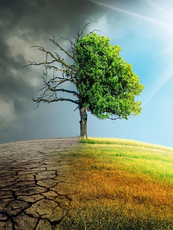 España destina 450.000 euros a tres entidades internacionales contra el cambio climático en 2018