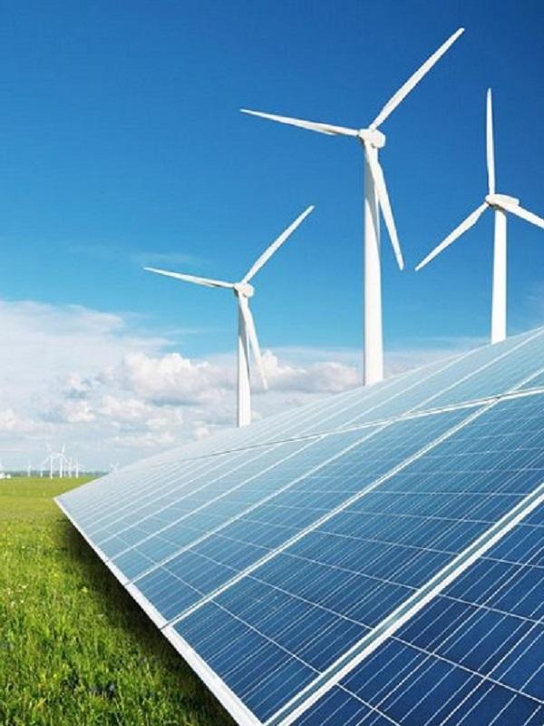 Felipe VI defiende que Canarias es un laboratorio único para las energías renovables