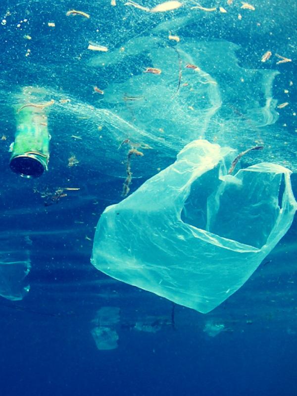 Diputación de Sevilla incentiva a alumnos de Secundaria de pueblos pequeños contra la contaminación de plásticos