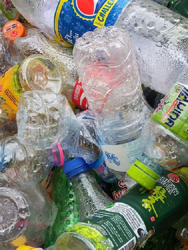 Los hongos, una puerta abierta para combatir la contaminación por residuos plásticos