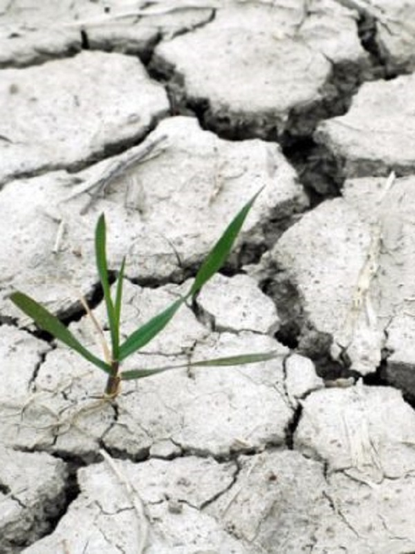 La ONU advierte a los países de que deben triplicar su lucha contra el cambio climático