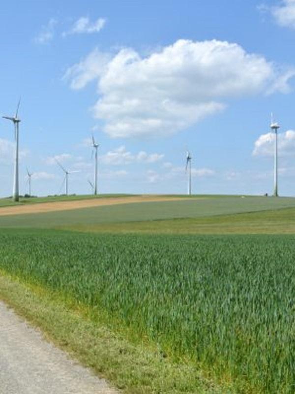 El GECV valora muy positivamente el proyecto de ley de cambio climático y transición energética