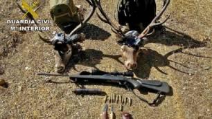 Detenidos cuatro delincuentes por practicar la caza furtiva en una finca de Almadén