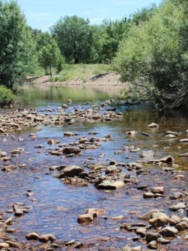 Voluntarios ambientales abordan en Córdoba y Jaén la conservación de los ecosistemas fluviales de Andalucía