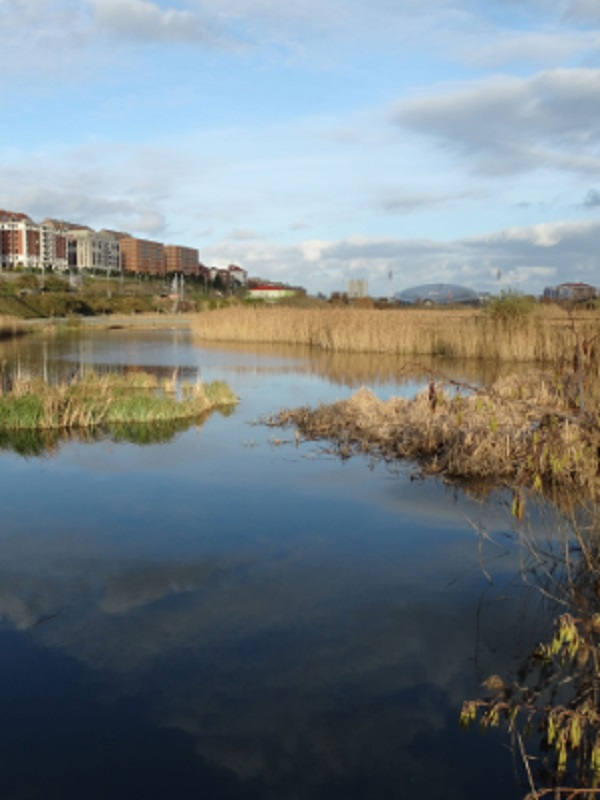España debe y puede defender a ultranza la Directiva Marco del Agua