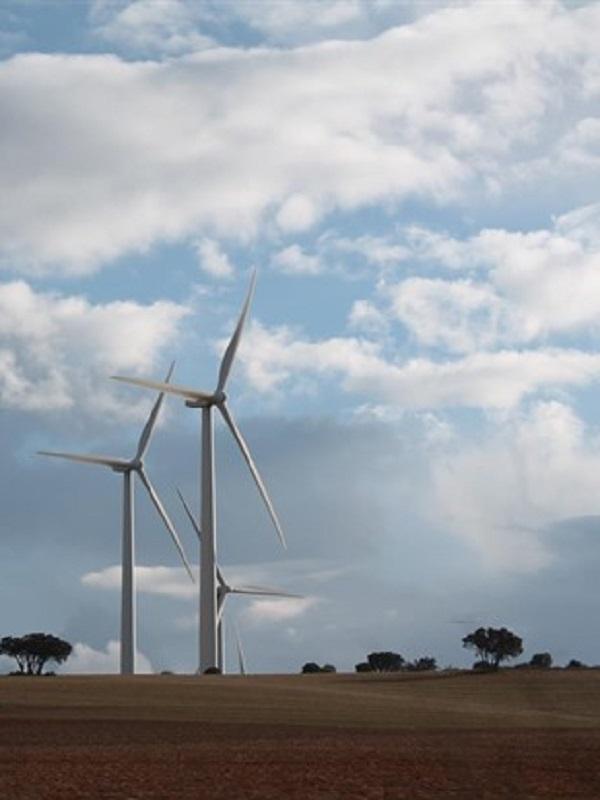 Casi la mitad de la energía eléctrica generada en Aragón es de origen renovable
