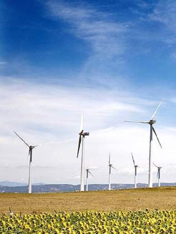 Las energías renovables aportaron 9.304 millones al PIB español en 2017