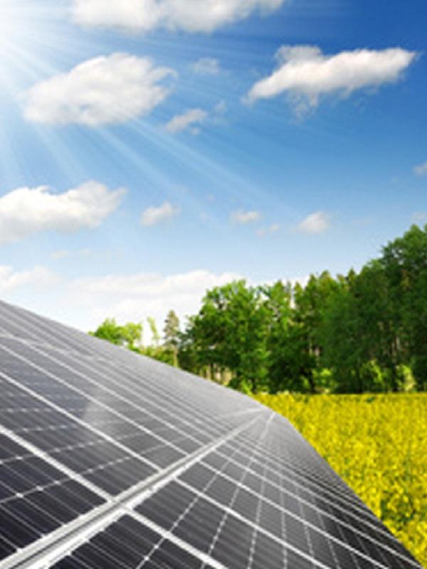 El Gobierno aprueba medidas urgentes para impulsar la transición energética ante la subida del precio de la electricidad