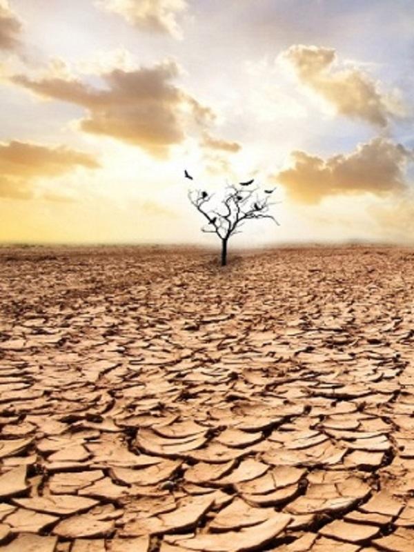 Euskadi. Udalsarea21 alerta sobre la vulnerabilidad de los municipios vascos al cambio climático