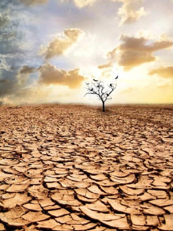 Equo exige medidas extraordinarias contra el cambio climático y sus consecuencias anunciados por la ONU