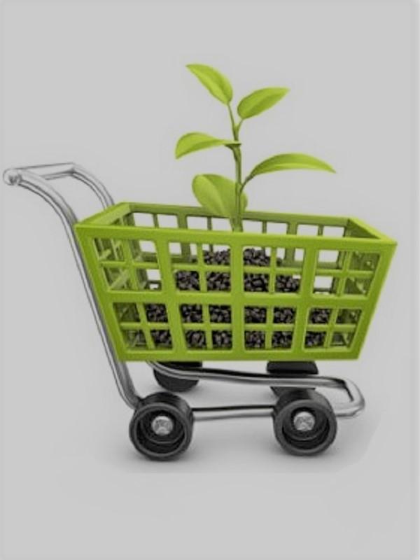 La Diputación de Cádiz expone su experiencia sobre Compra Pública Verde en un foro en Costa Rica