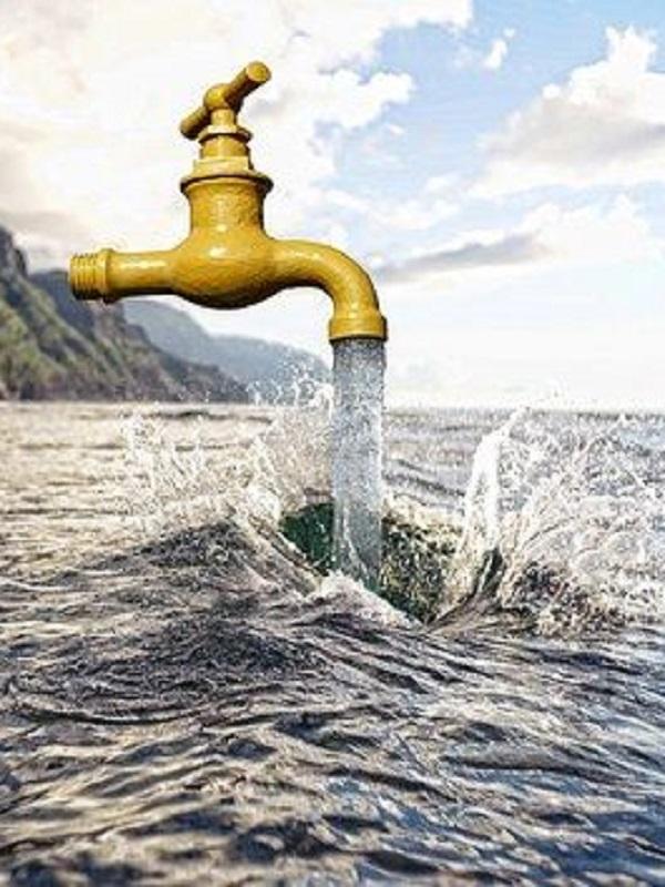 SEO/BirdLife en pro de la Directiva de Agua europea