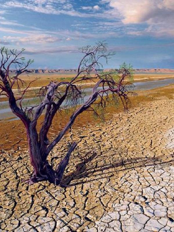 El Congreso no tramitará la ley de cambio climático del PP