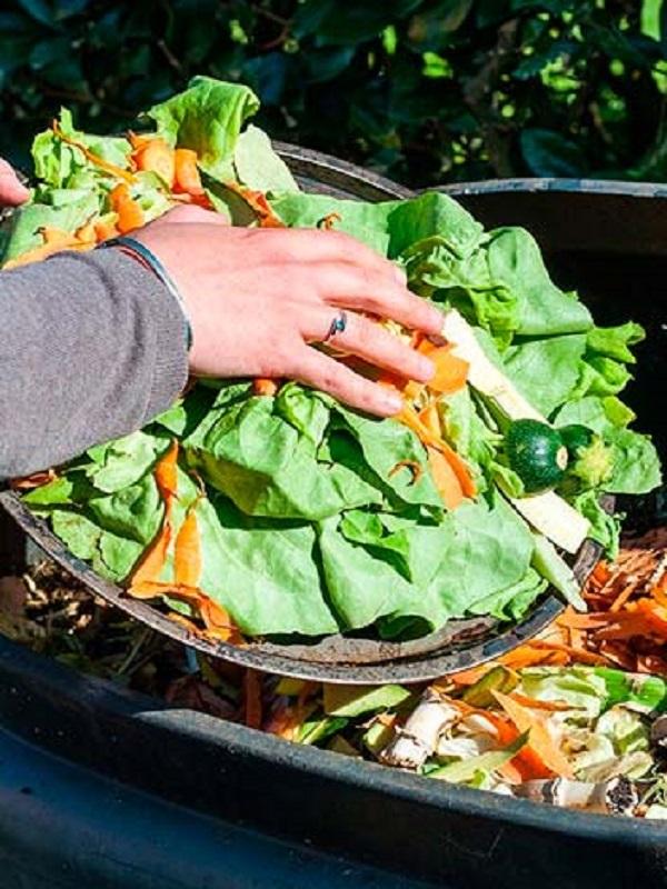 Colaboración: la clave para luchar contra el desperdicio alimentario