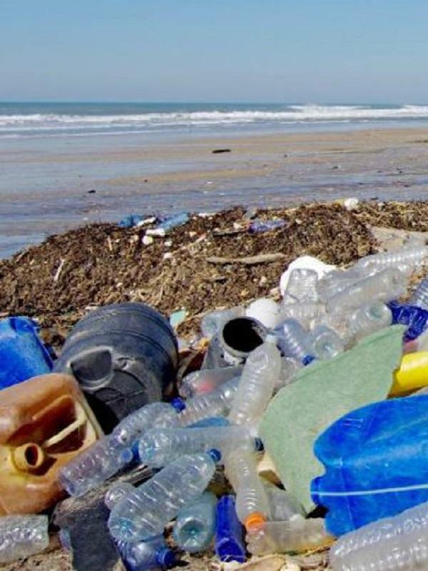 Las remotas islas del Atlántico Sur acorraladas por el plástico