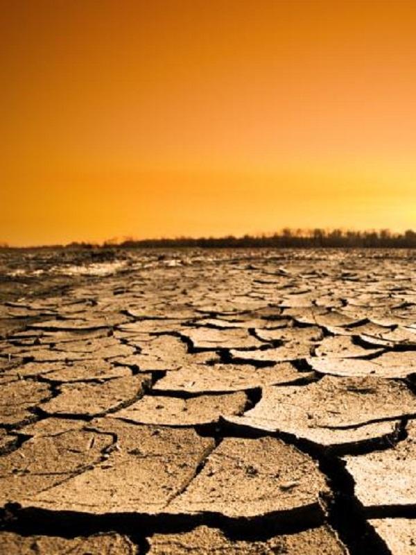 Reducir la presión humana y avanzar en descarbonización, propuestas de la UIB para paliar el calentamiento global