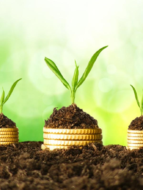 Europa apuesta por la bioeconomía para generar un millón de empleos 'verdes' para 2030