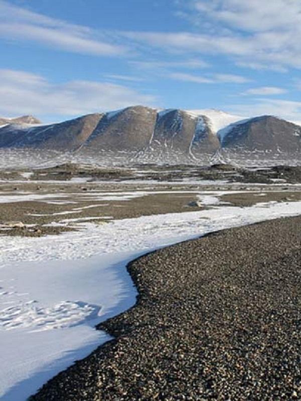 Signos de rápido cambio climático en el confín desértico antártico
