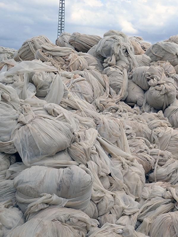 SIGFITO, la solución ambiental para los envases agrarios