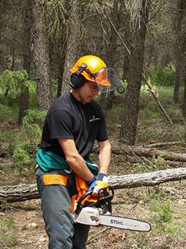 Trabajos en montes públicos de Huelva para prevenir incendios y daños naturales