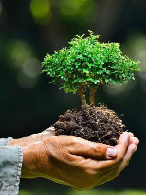 Las consecuencias de la lucha por el uso o posesión de los recursos naturales