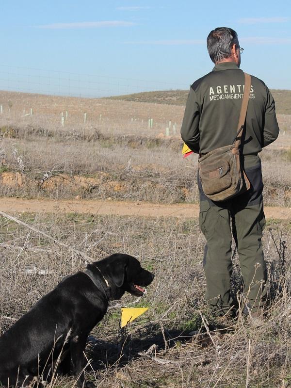 Agentes de Medio Ambiente y efectivos del Seprona de la Guardia Civil se forman en Úbeda para detectar cebos envenenados