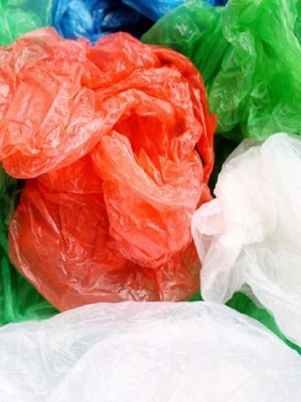 Navarra lanza una campaña para reducir el uso de bolsas de plástico