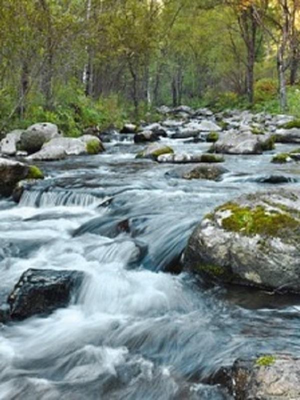 Tecnología verde. Evaluación de la erosión de los ríos mediante la determinación de isótopos radiactivos