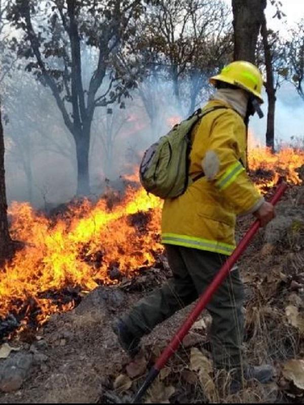 El año 2018, se perfila como el segundo mejor en incendios desde que hay registros, solo superado por 1963