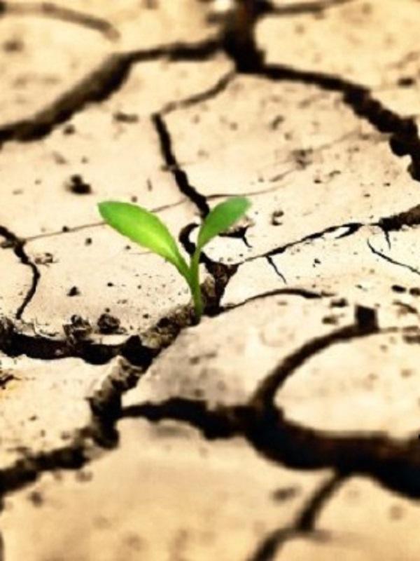 Cambio climático y movilidad humana, dos retos globales interconectados