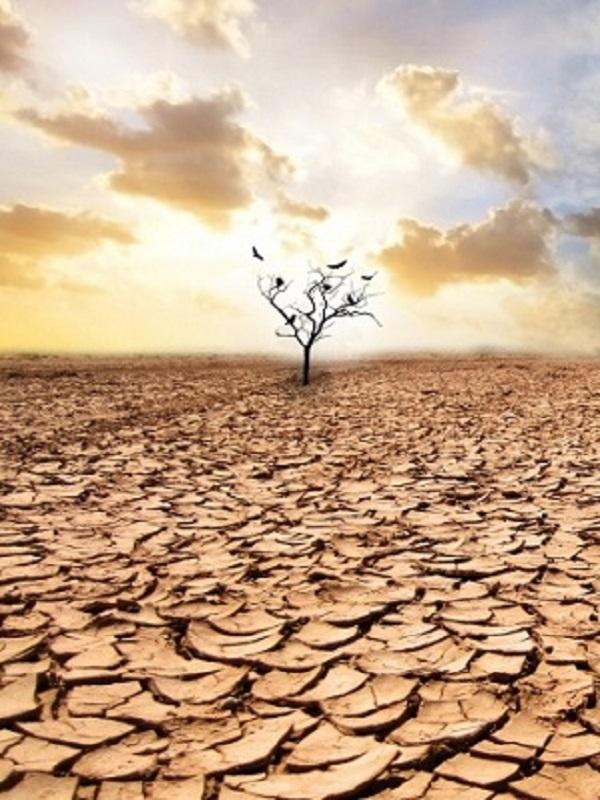 En marzo del 2019 Euskadi acogerá a los mejores especialistas del mundo en cambio climático