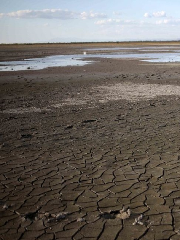 Los minusvalorados efectos del cambio climático en el Mediterráneo