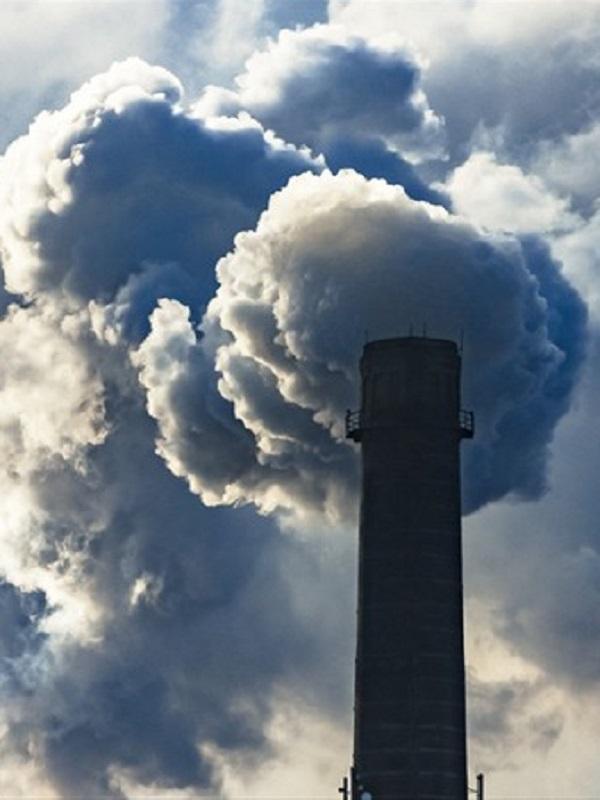 Bacterias del suelo pueden consumir gases de efecto invernadero