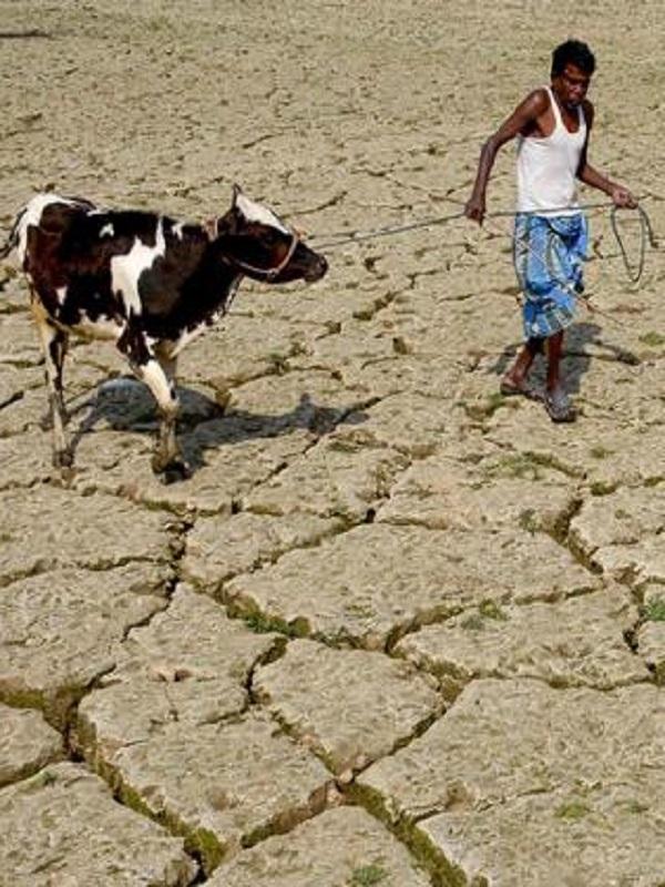 Bangkok clave para frenar el cambio climatico