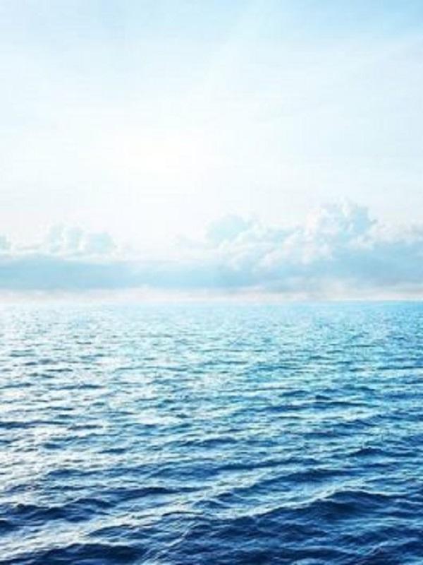 Tratado Global de los Océanos en la ONU