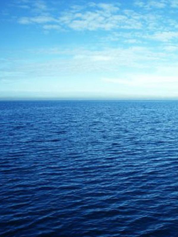 EQUO pregunta al Gobierno por su postura sobre el tratado mundial de protección de los océanos