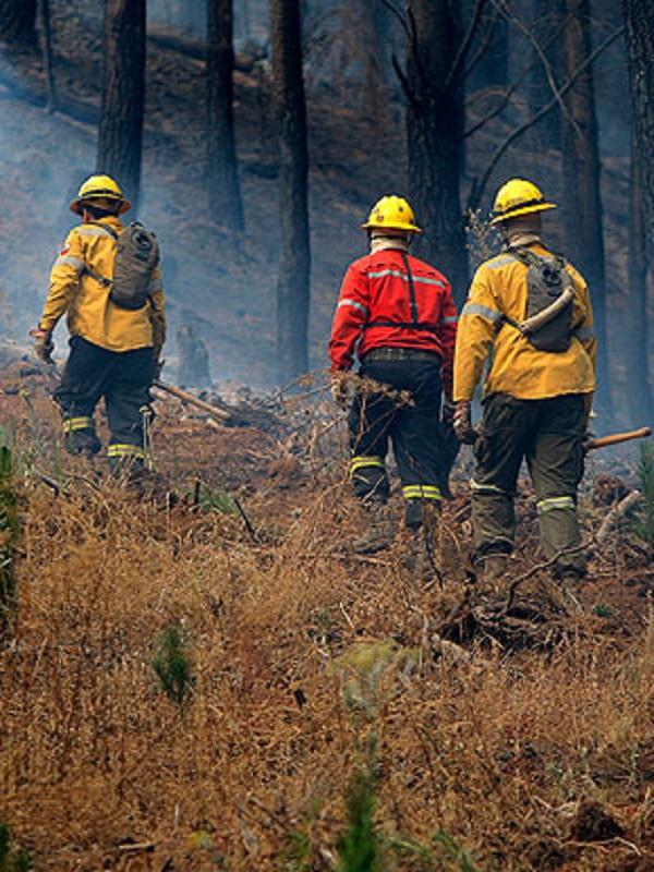 UAGN pide un marco regulatorio para la colaboración de agricultores en lucha contra incendios