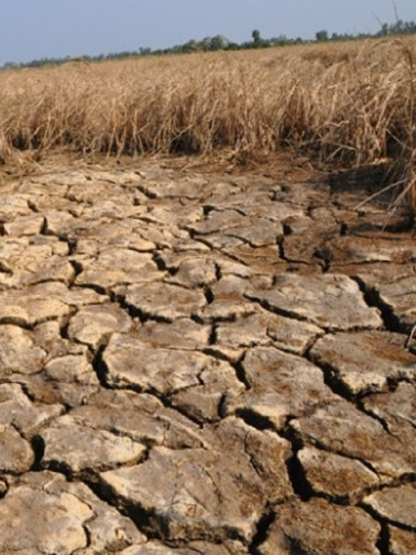 Unidos Podemos pide a Ribera un Plan contra la subida de la luz y acuerdan trabajar juntos en la Ley de Cambio Climático
