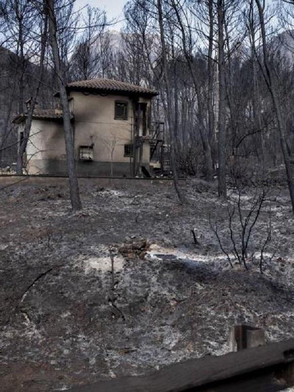 Entidades sociales diseñan la hoja de ruta para recuperar la zona del incendio de Llutxent