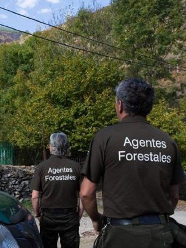 El Gobierno de La Rioja convoca seis plazas de agente forestal