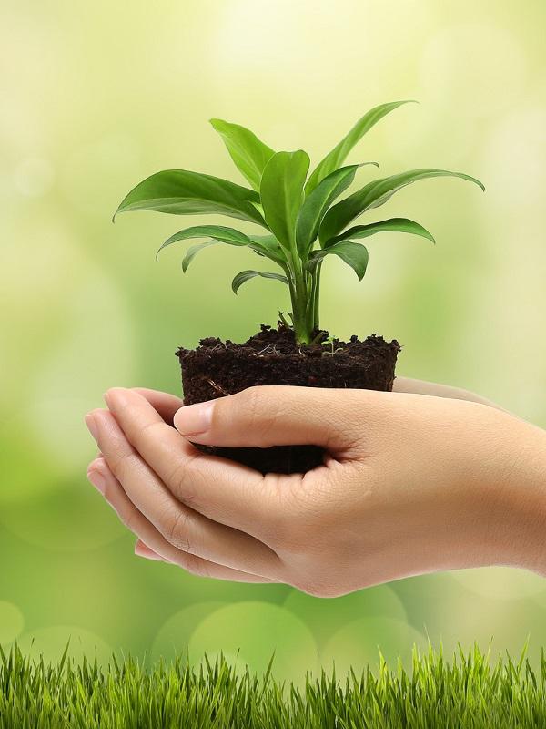El Área Sanitaria Norte de Jaén renueva su certificación de calidad medioambiental de la Unión Europea